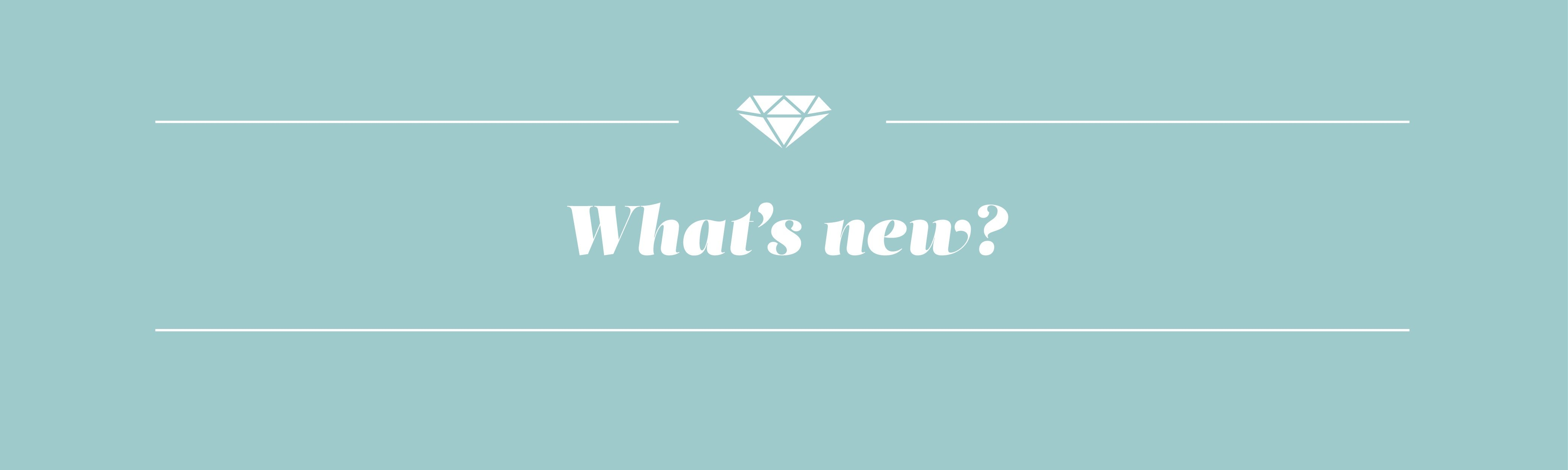 What's New Banner-small
